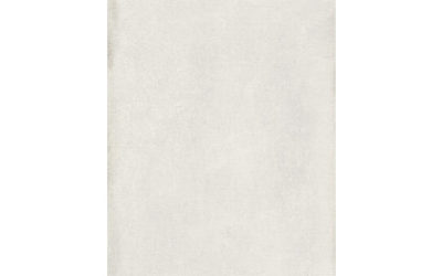 ethos features ceramic wall tile 460 x 900 mm